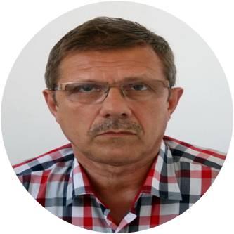 Mihai Badic